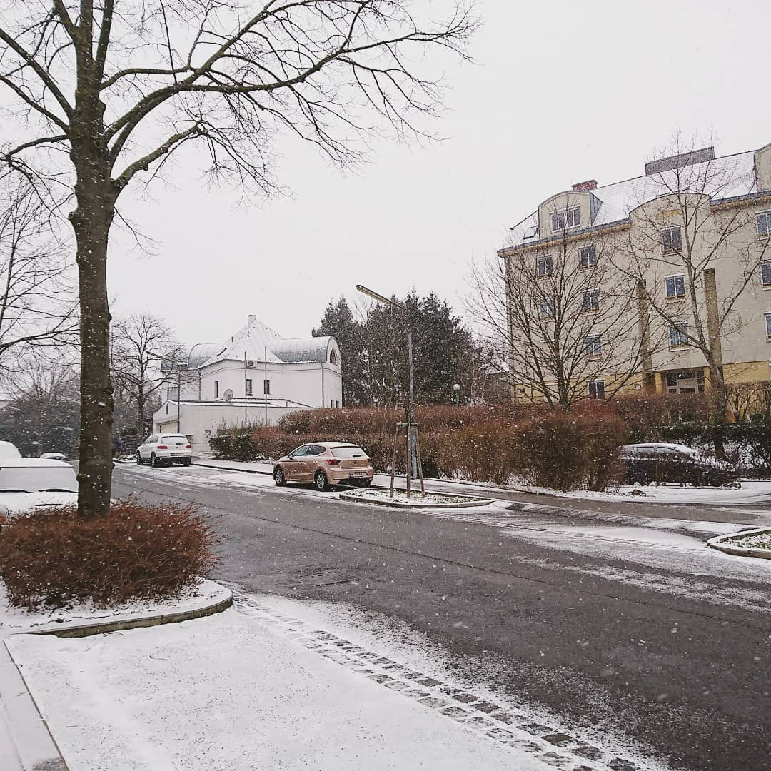 Snow in Vienna